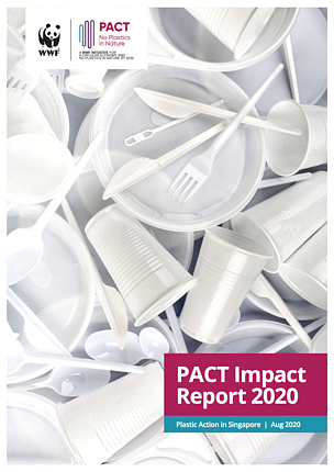 Pact Impact Report 2020 Cover Page
