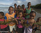 Children collecting Mangrove Seedlings Kavewa Island, Vanua Levu.