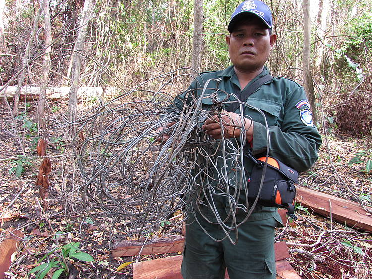 Snares Empty Forests in Cambodia, Laos and Viet Nam