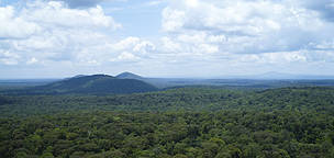 Mondulkiri Protected Forest - the location for the tiger reintroduction in Cambodia