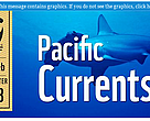 Pacific Currents: Jan-Feb 2013