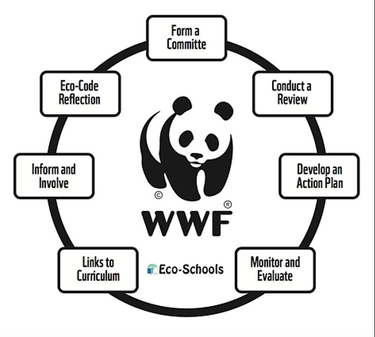 Eco-school programme
