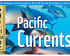 Pacific Currents: Sept-Oct 2012