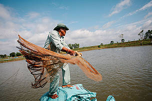 A fish farmer at one of the Hung Vuong pangasius fish farms in the Mekong Delta, searches the pond for fish.