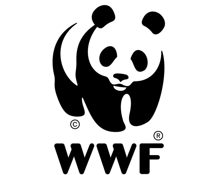 WWF-Viet Nam: Accounting and Procurement Assistant